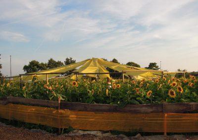 Ein Dach für die Weinlaube – Part IV und Ende!