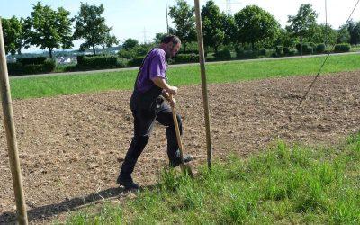 2011 Entstehung – Gartenarbeit