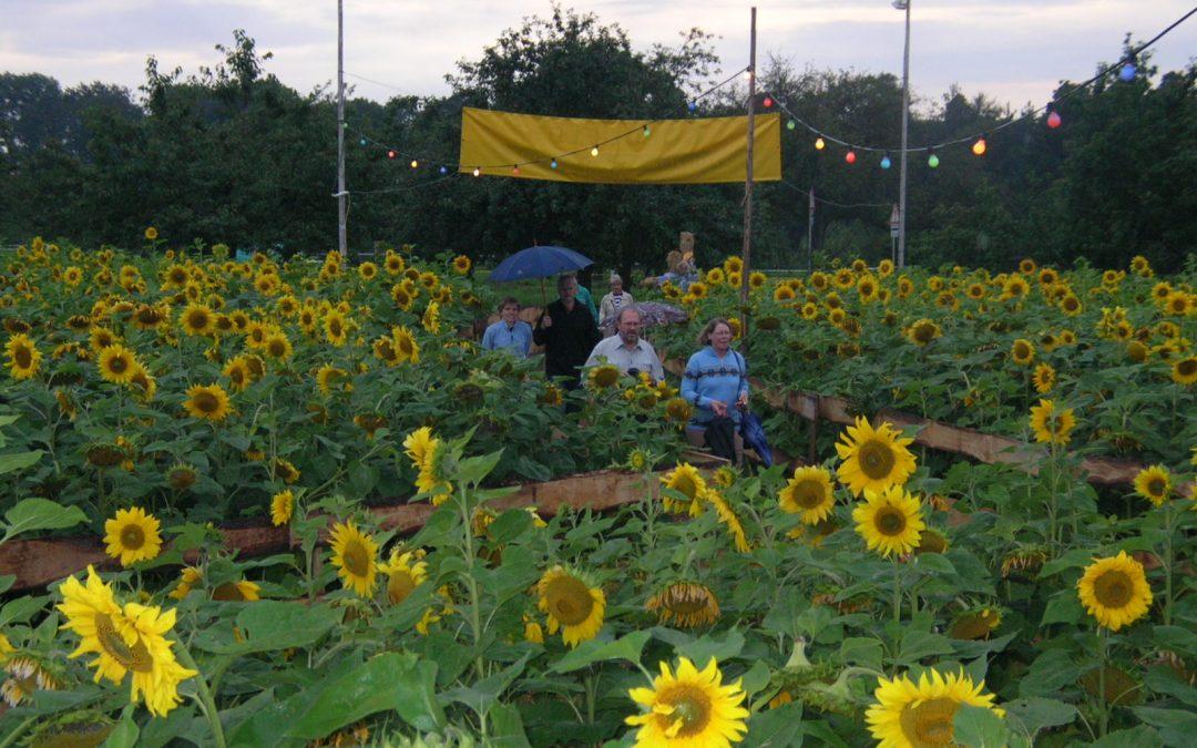 Festival 2005 Freitag