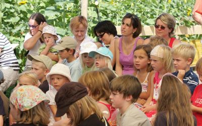 Festival 2009 Donnerstag